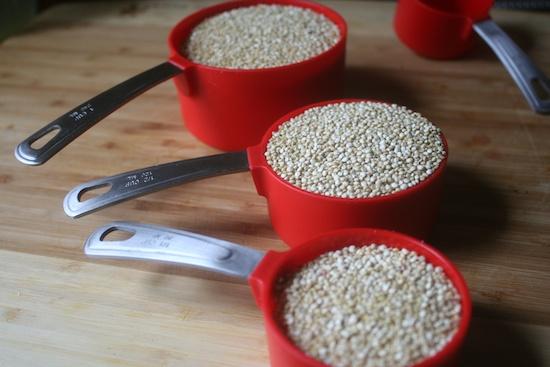 550-quinoa 026