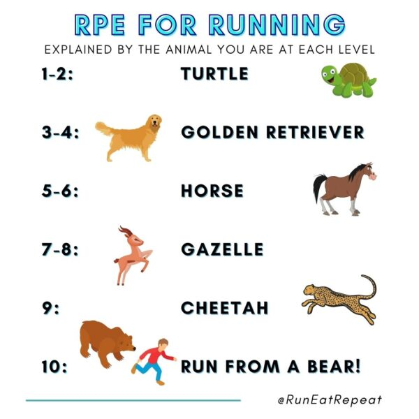 How to Run Faster with RPE Chart for Running Meme Instagram