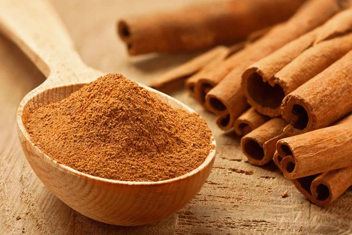 Cinnamon powder contains many medicinal properties