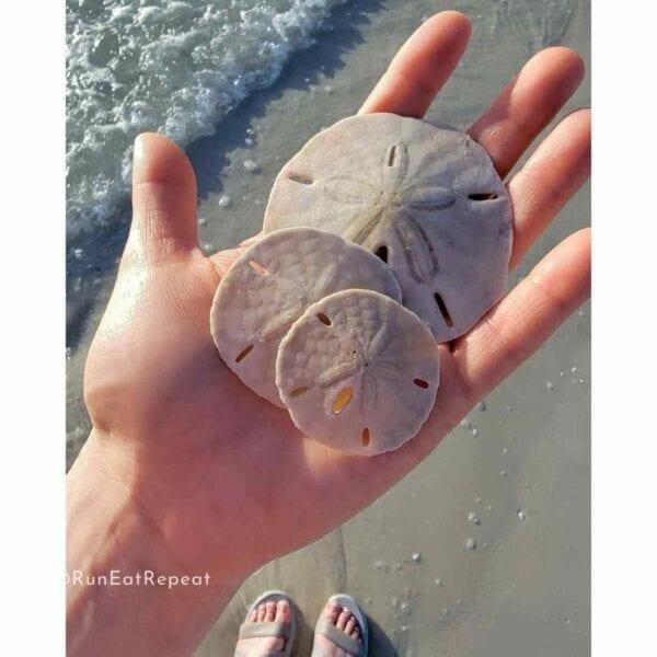 Marco Island FL Running Tips